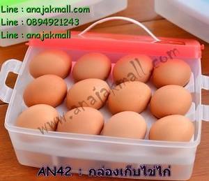 AN42-01 กล่องพลาสติกเก็บไข่ไก่